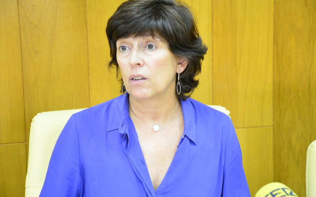 La exposición al público del Plan de Reforma Interior de La Jaud será hasta octubre
