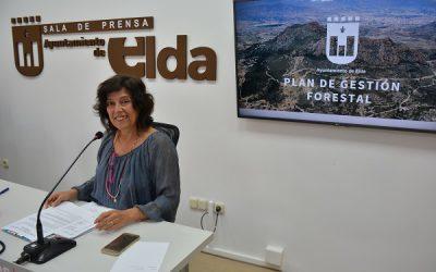 El Ayuntamiento encarga un Plan de Gestión Forestal para optar a subvenciones para el mantenimiento de Camara y Bolón