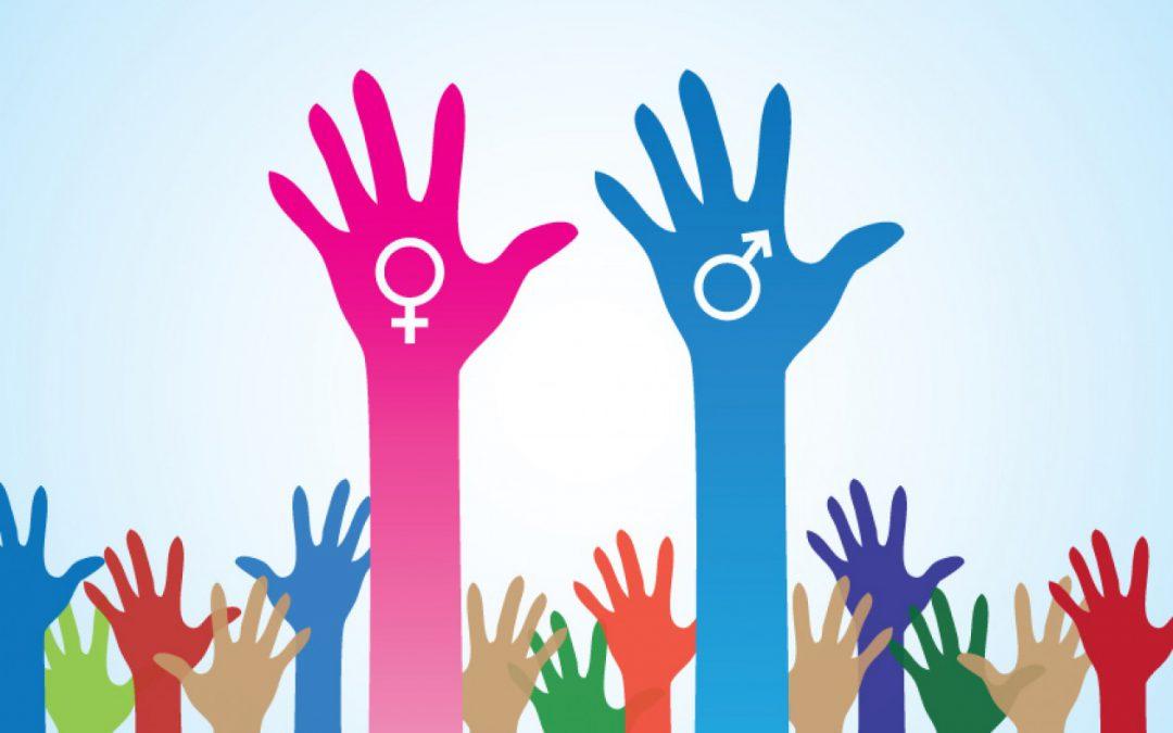 El Ayuntamiento de Elda ampliará en 2019 el servicio de asesoramiento para favorecer la Igualdad