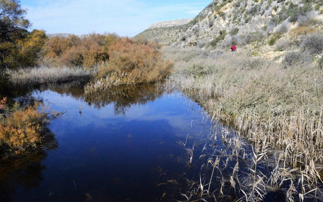 Comienza la exposición para la declaración de Paraje Natural Municipal de El Pantano